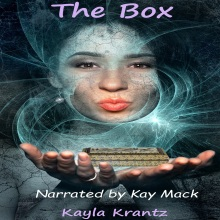 The Box Audiobook Cover